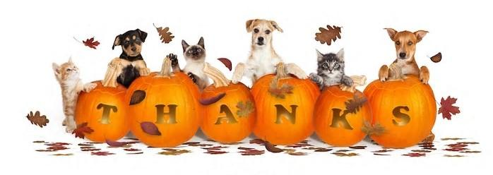 HSEC Thankful for Support Throughout the Year; Office Will Be Closed Thursday, Friday