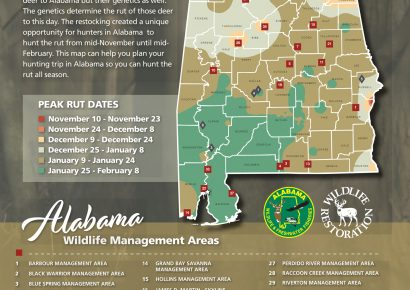 Hunters can use the WFF Rut Map to determine the likely dates of whitetail breeding activity