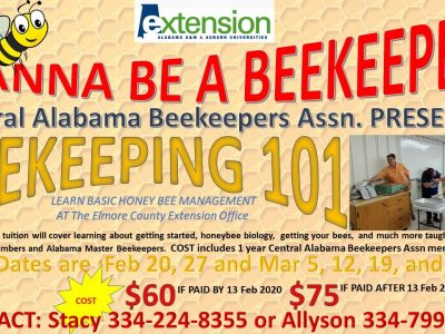 Are You Interested in Beekeeping? Learn Basic Honey Bee Management at Elmore County Extension Office