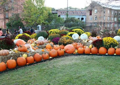 FALL CALENDAR: New Events Added; Make Plans to See and Enjoy This Season
