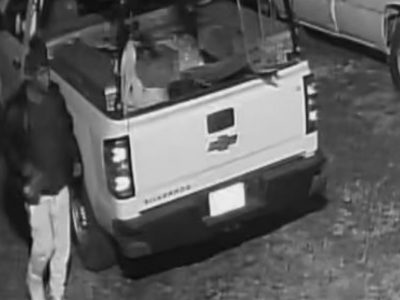 Two Suspects Need Identification after Theft at Supply Retail Store in Millbrook; Reward Offered
