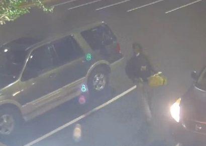 Prattville PD Seeks Identity of Suspect in Vehicle Breakin; CrimeStoppers Offers Reward