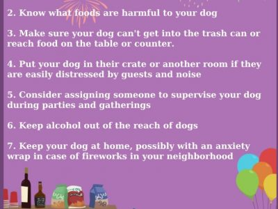 New Year's Eve and Fireworks: Avoid Lost Pets with Pre-Planning
