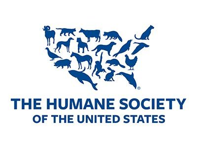 Humane Society of Elmore County Wants you to Know More About Them